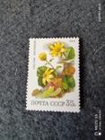 Абкляч почтовой марки СССР 1988года