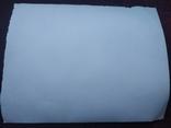 Пляж море плавки торс, фото №3