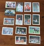 Календарики «спорт» 1984—1989 14 штук, фото №2