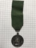 Медаль За верную службу Финляндия в составе Российской Империи, фото №2