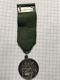 Медаль За верную службу Финляндия в составе Российской Империи, фото №5