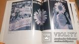 """Тир. 7500 Плакат политический Альбом изд.""""Плакат"""" более 300 работ(большой формат), фото №9"""