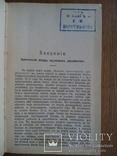 Апостолы 1900 Ренан Э., фото №6