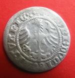 Польща полугрош Литовський 1513, фото №4