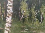 Пейзаж з підписом 35х49см, фото №7