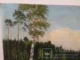 Пейзаж з підписом 35х49см, фото №11