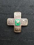 Полковой знак Харьковских улан копия, фото №2