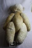 Большой медведь (опилки), фото №7