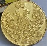 5 рублів 1833 року, фото №10