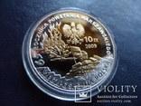 10 злотых 2009  Польша серебро  (3.5.4)~, фото №5