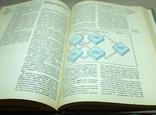Книга страны и народы земли и человечества, фото №6