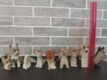 Собаки фарфор. 8 фигур., фото №3