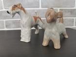 Собаки фарфор. 8 фигур., фото №5