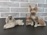 Собаки фарфор. 8 фигур., фото №8
