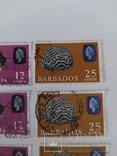 Марки Барбадоса 1965, фото №5