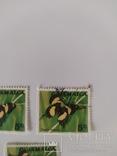 Марки Ямайки 1970 метелики, фото №3