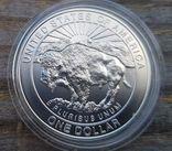 "США 1 доллар 1999 г. Серебро. Национальный парк ""Йеллоустоун"". Гейзер. Бизон., фото №3"