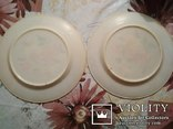 Декоративные тарелки ( 2 шт . )  колкий пластик, фото №6