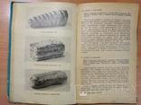 Как приготовить дома кондитерские изделия. М.П.Даниленко. 1965, фото №10