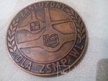 Медаль Совета молодежи ВВС (Польша), фото №3