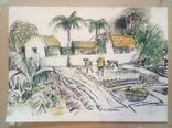 Вьетнамские колхозы.1985 год., фото №2
