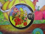 Річний набір обігових монет НБУ 2014 рік , Годовой набор обиходных монет НБУ 2014 год фото 10