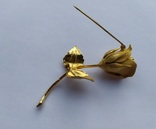 Брошь «Роза» от компании Longcraft линия  GIOVANNI . США. 60-е гг., фото №7