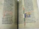 Реймска евангелія в 2 кнігах- факсимильное издание, фото №10