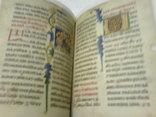 Реймска евангелія в 2 кнігах- факсимильное издание, фото №11
