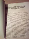 """П.Сліпчук, П. Калениченко """"У чарівному місті"""", вид. ЦК ЛКСМУ """"Молодь"""" 1955г, фото №6"""