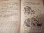 Б.Житков, Про слона, рис.Тырсы, изд. ДЛ 1974, фото №10