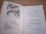Sztuka chinska, изд, Arcady Warsaw 1978г, фото №4