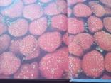 Книга о вкусной и здоровой пищи 1969 год, фото №4
