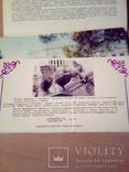 Ливадийский дворец, набор 18 откр., изд. РУ 1990г, фото №5