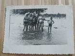 Отдых море плавки купальники, фото №2