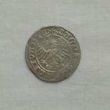 Полугрош 1514р., фото №5