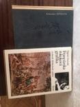 2 книги одним лотом, фото №6