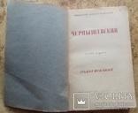 Н.Б. Чернышевский. Книга 1. Годы исканий 1944 год., фото №4