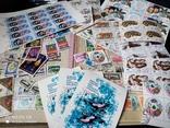 Кляссер с марками Европы + бонус гора марок, фото №2
