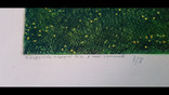 "Н.Н.Шелест,""21 вік у небі запалав"",3/8,1985-86 гг., фото №5"