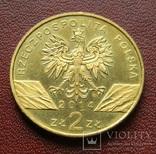 Польша 2 злотых Польский Пони 2014, фото №3