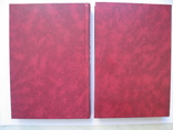 """Дао Ху-Гуна"" (комплект из 2 книг),Ю.М.Галенович, 2008 год, тираж 1 000, фото №13"