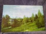 Репродукция картины на ткани Весна в Павловском парке 1982г.тираж 15 000., фото №2