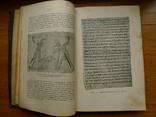 Книги по мировой истори (4 разрозненных тома), фото №8