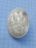 Відзнака: Zaloba narodu polskiego 1795 - 1895, фото №2