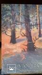 Картина 45х67,5 см, полотно, олія, фото №3