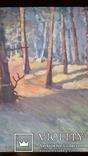 Картина 45х67,5 см, полотно, олія, фото №4
