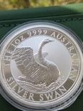 Лебедь Австралии 2020г 1унц 999 серебро Swan Лебідь Австралії Австралия 1 долар, фото №4