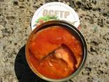 Осетр в томатном соусе, фото №5