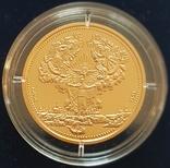 Києво-Печерська лавра, 200 гривень, золото 1/2 унції, фото №4